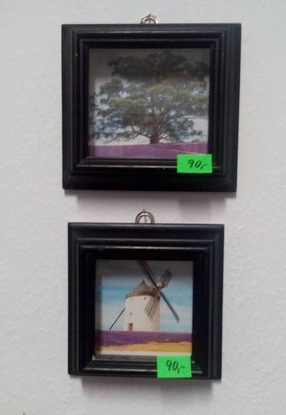 obrazky  mlýn a  strom