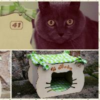 Boudička pro kočičky