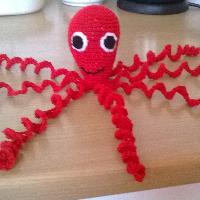 Háčkovaná chobotnička červená